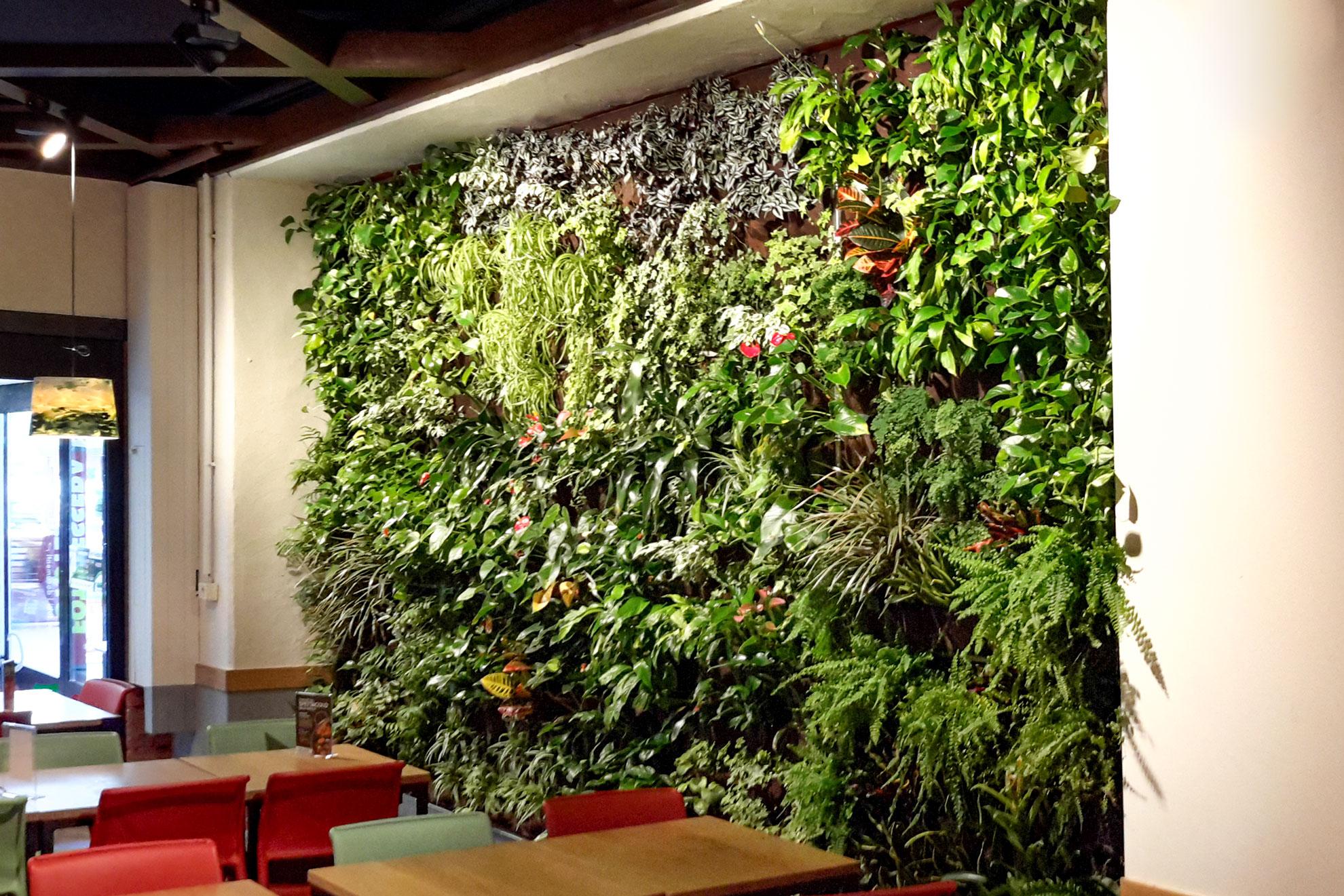 Installazione verde verticale milano Grandate Floravip Tutor International Srl